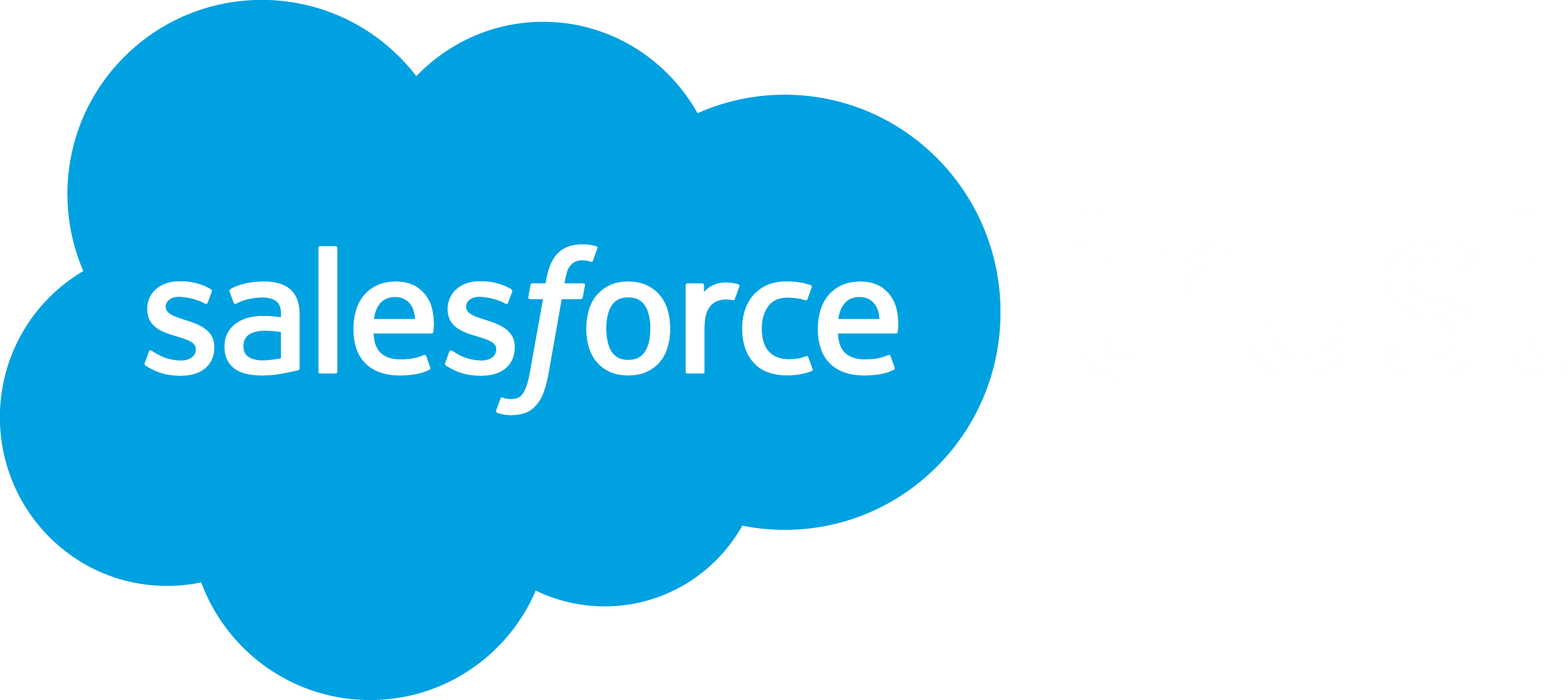 A Salesforce logo