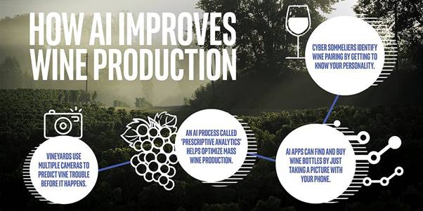 An infographic showing how AI improves wine production