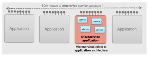 A schematic representation of microservices and SOA architectures