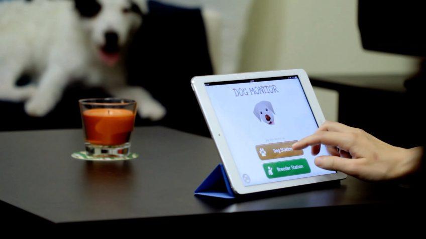 A screenshot of a pet monitoring app