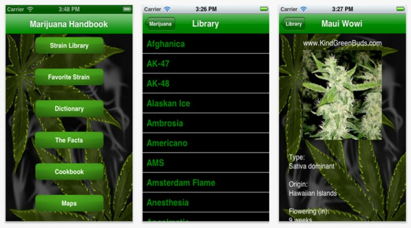 An example of a marijuana app